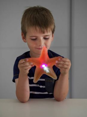 Ooey Gooey Light Up Starfish